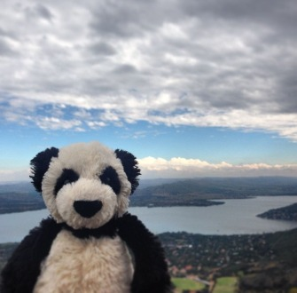 Panda Hartebeespoort