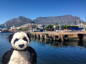 Table Mountain Selfie