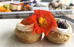 Scone with Apricot and Fig Jam