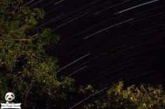 Amazing star trails